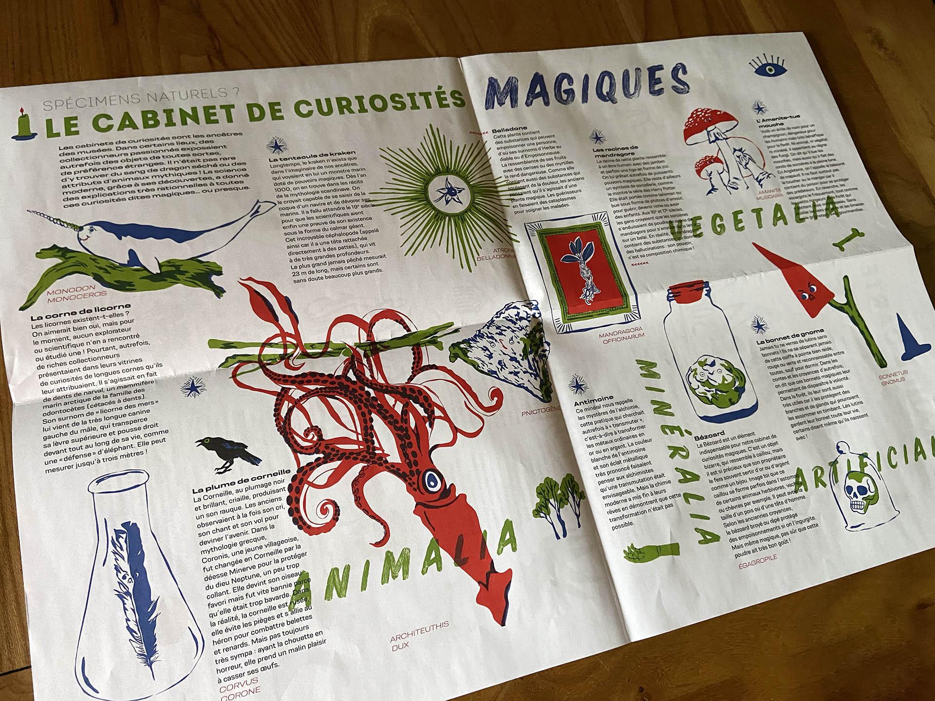 Vox, gazette du Muséum de Toulouse